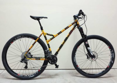 mtn-bike-plaid-side